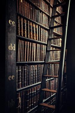 Evelina Kremsdorf HISTORICAL LIBRARY Interiors/Rooms