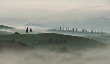 Jaroslaw Blaminsky MISTY ITALIAN LANDSCAPE Fields