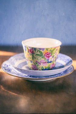 Jill Ferry CLOSE UP OF FLORAL TEA CUP Miscellaneous Objects