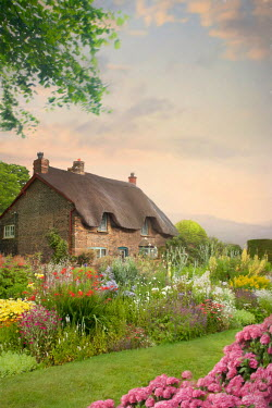 Lee Avison THATCHED COTTAGE WITH GARDEN OF FLOWERS Houses
