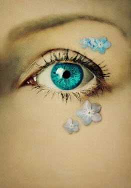 Lyn Randle CLOSE UP OF FEMALE EYE WITH FLOWERS Women