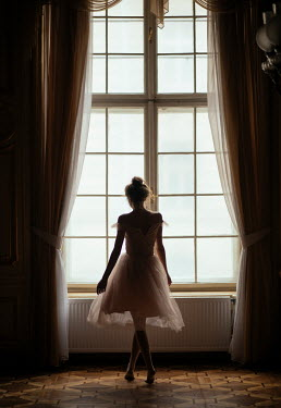 Marta Syrko GIRL IN CHIFFON BY GRAND WINDOW Women