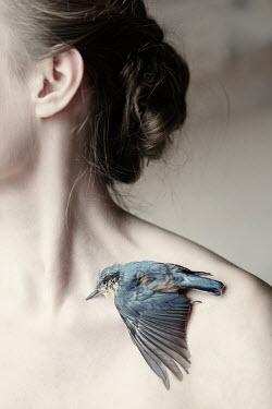 Magdalena Russocka dead bird lying on woman's shoulder Women