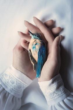 Magdalena Russocka woman holding dead bird Women