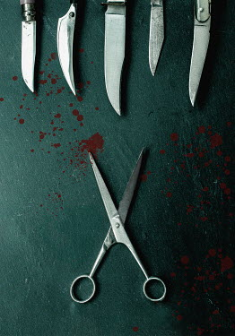 Jane Morley SCISSORS AND KNIVES WITH BLOODSTAINS Miscellaneous Objects