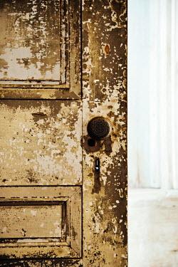 Irene Suchocki PEELING PAINT ON OLD DOOR Building Detail