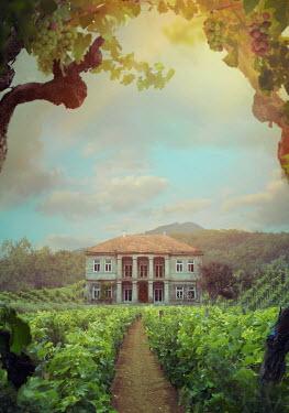 Drunaa country manor house on vineyard path Houses