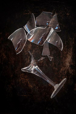 Sally Mundy SMASHED WINE GLASS  IN PIECES Miscellaneous Objects