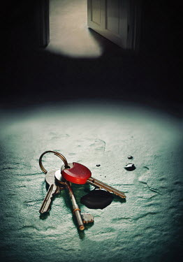 Lyn Randle KEYS AND INK DROPPED BY SHADOWY DOOR Miscellaneous Objects