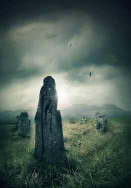 Lyn Randle ANCIENT STANDING STONES IN CLOUDY COUNTRYSIDE Rocks/Mountains