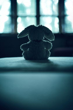 Magdalena Russocka silhouette of stuffed toy sitting by window