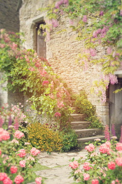Victoria Davies STONE HOUSE AND STEPS WITH SUMMER FLOWERS Houses