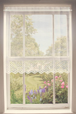 Victoria Davies WINDOW WITH LACE CURTAIN AND SUMMERY GARDEN Building Detail