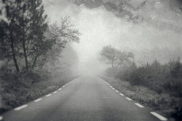 Christine Amat MISTY RURAL ROAD Paths/Tracks