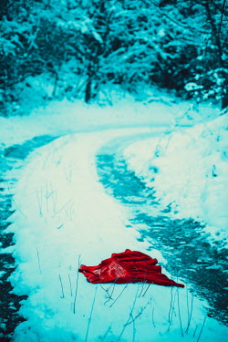 Ildiko Neer Child's red dress in snow