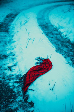 Ildiko Neer Red scarf in snow