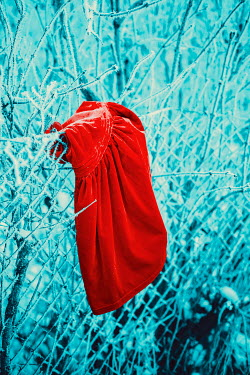 Ildiko Neer Child's red dress on frosty fence
