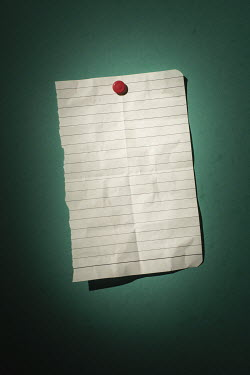 Ysbrand Cosijn BLANK LINED PAPER Miscellaneous Objects