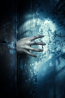Magdalena Russocka sinister hand opening door Women