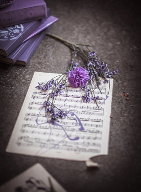 Dasha Pears MUSIC SHEET WITH PURPLE FLOWERS AND BOOKS Miscellaneous Objects
