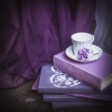 Dasha Pears TEACUP AND FLOWER ON PURPLE BOOKS Miscellaneous Objects