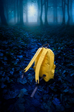 Lee Avison YELLOW RUCKSACK IN PARK AT NIGHT Miscellaneous Objects