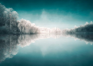 David Keochkerian CALM LAKE WITH SNOWY TREES Lakes/Rivers