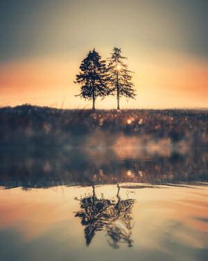 David Keochkerian TREES REFLECTING IN RIVER AT SUNSET Lakes/Rivers