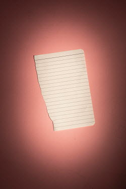Ysbrand Cosijn BLANK PIECE OF LINED PAPER Miscellaneous Objects