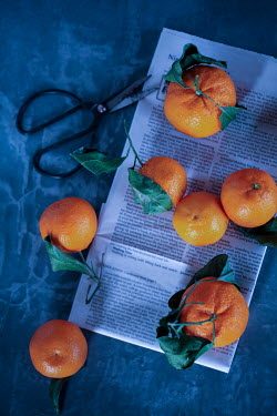 Jean Ladzinski ORANGES WITH NEWSPAPER AND SECATEURS Miscellaneous Objects