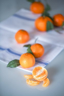 Jean Ladzinski FRESHLY PICKED ORANGES AND NAPKIN Miscellaneous Objects