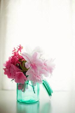Susan Fox PINK FLOWERS IN GLASS BY WINDOW Flowers