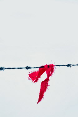 Magdalena Russocka Red material hooked on barbed wire