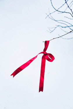 Magdalena Russocka red ribbon with bow hanging on twig in winter Miscellaneous Objects