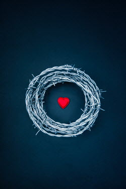 Magdalena Russocka heart in nest of barbed wire Miscellaneous Objects