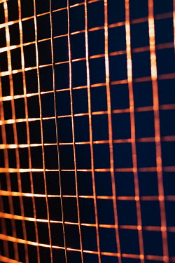 Ysbrand Cosijn CLOSE UP OF WIRE MESH FENCE Miscellaneous Objects