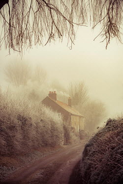 Nic Skerten COTTAGE IN FROSTY COUNTRY LANE Houses
