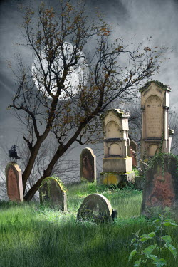 Victoria Davies GRAVEYARD WITH CROW AND MOON Statuary/Gravestones