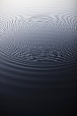 Aleah Ford LARGE RIPPLES ON WATER Lakes/Rivers