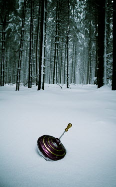 Carmen Spitznagel SPINNING TOP IN SNOW BY FOREST Miscellaneous Objects