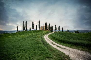 Evelina Kremsdorf ITALIAN VILLA WITH CYPRESS TREES Houses