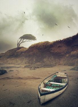 Mark Owen BOAT ON SANDY BEACH Boats