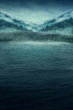 Elena Schweitzer EMPTY MISTY LAKE WITH TREES Lakes/Rivers