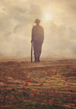 Lyn Randle SILHOUETTED HISTORICAL SOLDIER IN POPPY FIELD Men
