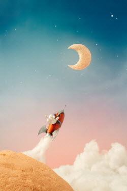 Hardi Saputra MODEL SPACESHIP WITH MAN AND MOON Miscellaneous Objects