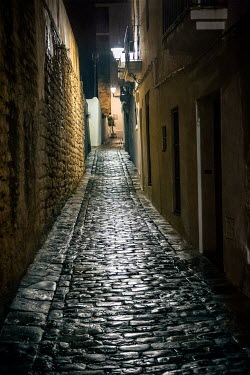 Evelina Kremsdorf COBBLESTONED STREET AT NIGHT Streets/Alleys