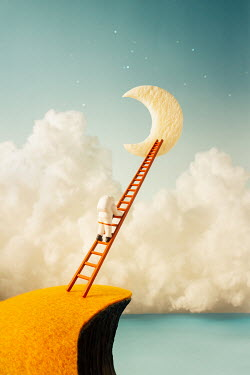 Hardi Saputra TOY ASTRONAUT CLIMBING LADDER TO MOON Miscellaneous Objects