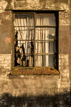 Colin Hutton DILAPIDATED WINDOW AND BUILDING Building Detail