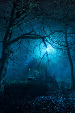 Colin Hutton WOODEN HOUSE IN FOREST AT NIGHT Houses