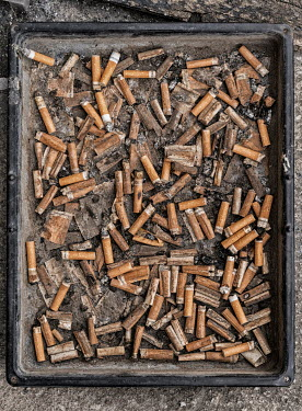 Colin Hutton TRAY OF CIGARETTE BUTTS FROM ABOVE Miscellaneous Objects